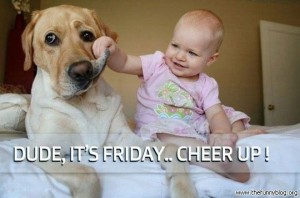 friday-cheer-up-dog