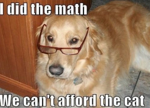 funny-dogs-pics