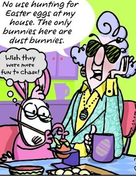 Can Long weekend funny cartoon quote