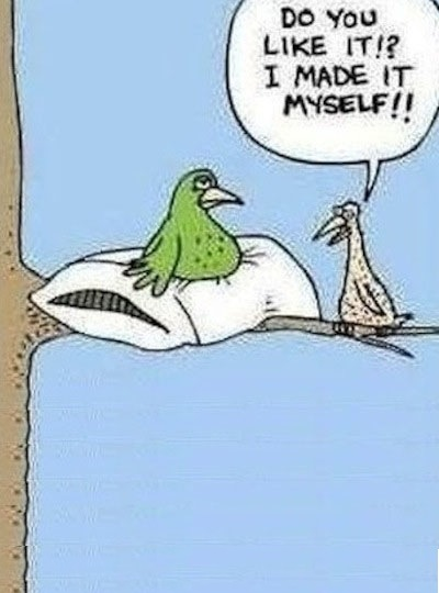 lol bird cartoon
