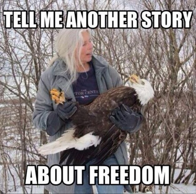 American Eagle and Freedom